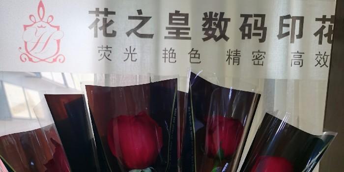 数码印花女神节快乐!