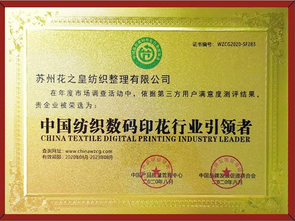 中国纺织数码印花行业引领者