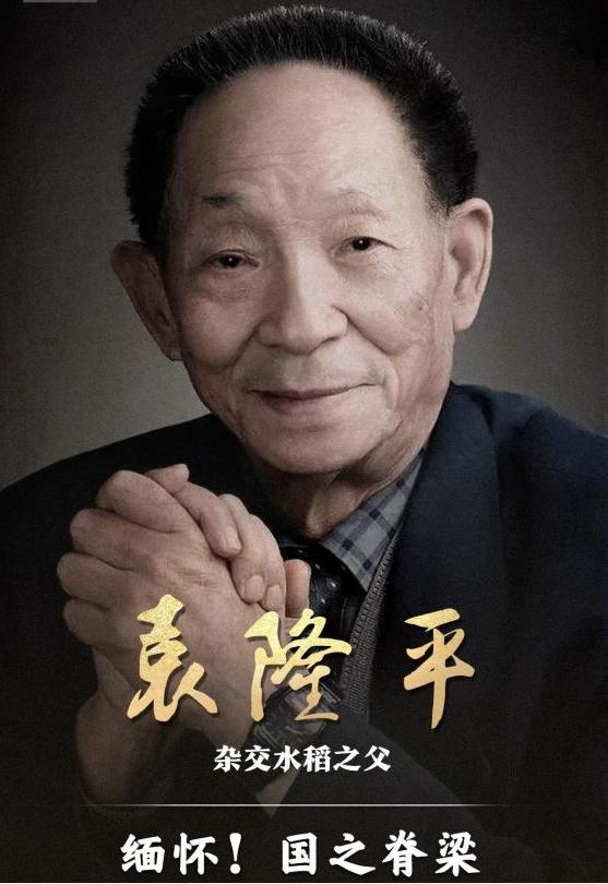 中国杂交水稻之父袁隆平院士